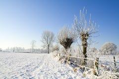 Paesaggio di inverno con neve Fotografie Stock