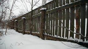 Paesaggio di inverno con neve di caduta video d archivio