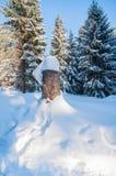 Paesaggio di inverno con neve, il sole e gli alberi di Natale puliti freschi Fotografia Stock
