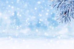 Paesaggio di inverno con neve Priorità bassa di natale con la filiale dell'abete immagine stock libera da diritti