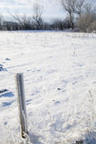 Paesaggio di inverno con neve su un campo Fotografia Stock