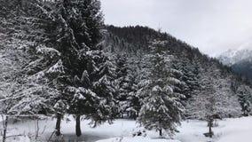 Paesaggio di inverno con rivelare di un gruppo di uomini che camminano nella neve durante l'inverno in un parco naturale dell'abe archivi video