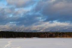 Paesaggio di inverno con un bello lago congelato e cespugli nella sera Immagine Stock Libera da Diritti