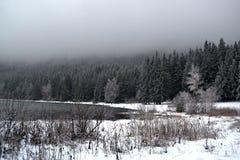 Paesaggio di inverno con un lago della montagna in nebbia Fotografia Stock