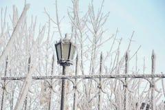 Paesaggio di inverno con una lanterna Immagini Stock Libere da Diritti