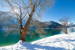 Paesaggio di inverno del lago mountain Alpi, Achensee, Austria Fotografie Stock Libere da Diritti
