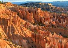 Paesaggio di inverno del parco nazionale del canyon di Bryce immagine stock