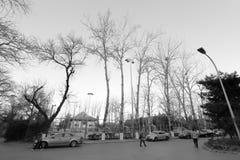 Paesaggio di inverno dell'università di Pechino nell'inverno, immagine in bianco e nero Fotografia Stock Libera da Diritti
