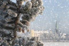 Paesaggio di inverno della città di Riga immagine stock libera da diritti