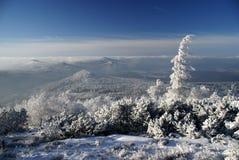 Paesaggio di inverno della montagna Fotografie Stock
