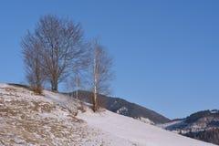 Paesaggio di inverno della montagna Fotografia Stock Libera da Diritti