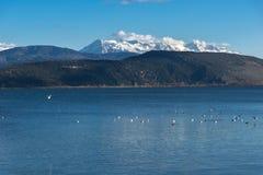 Paesaggio di inverno della montagna del lago Pamvotida e di Pindus dalla città di Giannina, Epiro, Grecia immagine stock