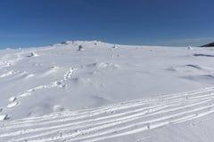 Paesaggio di inverno della montagna di Vitosha, Sofia City Region, Bulgaria fotografia stock