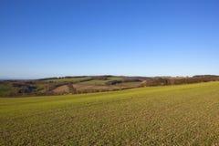Paesaggio di inverno della rappezzatura dei wolds di Yorkshire Fotografie Stock Libere da Diritti
