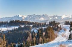 Paesaggio di inverno delle montagne di Tatra Immagini Stock