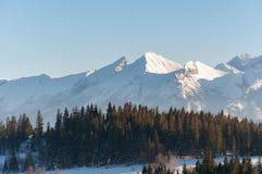 Paesaggio di inverno delle montagne di Tatra Fotografie Stock Libere da Diritti