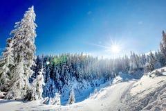 Paesaggio di inverno delle montagne nevose Fotografia Stock