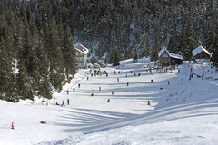 Paesaggio di inverno di Carpathians Fotografia Stock