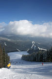 Paesaggio di inverno di Carpathians Immagini Stock Libere da Diritti