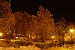 Paesaggio di inverno di notte Immagini Stock