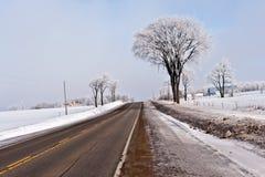 Paesaggio di inverno di Ontario Immagini Stock