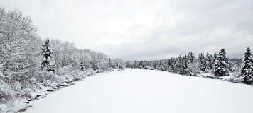 Paesaggio di inverno dopo la caduta della neve Fotografie Stock Libere da Diritti