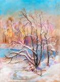 Paesaggio di inverno, febbraio Fotografia Stock