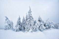 Paesaggio di inverno di fiaba fotografia stock libera da diritti