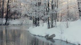 Paesaggio di inverno Fiume e sponda del fiume di inverno coperti di neve archivi video