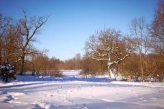 Paesaggio di inverno in giorno pieno di sole Fotografia Stock Libera da Diritti