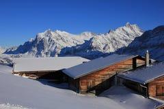 Paesaggio di inverno in Grindelwald, alpi svizzere Fotografia Stock