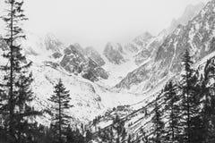 Paesaggio di inverno, montagna innevata Fotografie Stock Libere da Diritti