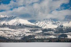 Paesaggio di inverno, montagna innevata Immagine Stock