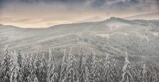 Paesaggio di inverno in montagne beskidy polacche Fotografia Stock Libera da Diritti