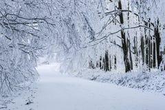 Paesaggio di inverno in montagne carpatiche vicino a Pezinok, Slovacchia Immagini Stock Libere da Diritti
