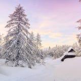 Paesaggio di inverno in montagne Julian Alps Fotografie Stock Libere da Diritti