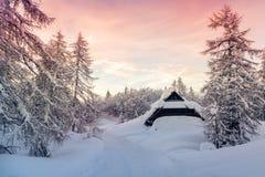 Paesaggio di inverno in montagne Julian Alps Immagine Stock Libera da Diritti