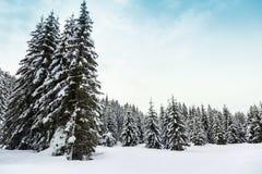 Paesaggio di inverno in montagne Julian Alps Immagini Stock