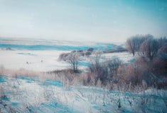 Paesaggio di inverno in natura della neve Fotografia Stock