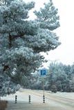 Paesaggio di inverno nel vicolo del parco della città Fotografia Stock