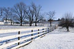 Paesaggio di inverno nell'Ohio Fotografia Stock