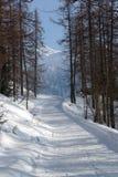 Paesaggio di inverno nella valle d'Aosta Immagine Stock Libera da Diritti
