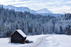 Paesaggio di inverno nelle alpi svizzere Fotografia Stock