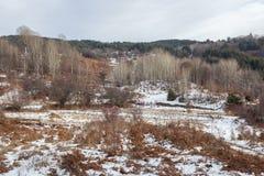 Paesaggio di inverno nelle montagne immagine stock