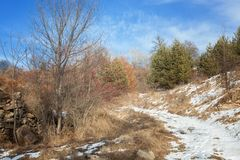 Paesaggio di inverno nelle montagne fotografia stock libera da diritti