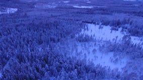 Paesaggio di inverno nelle montagne stock footage
