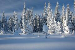 Paesaggio di inverno in Norvegia Fotografie Stock