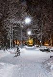 Paesaggio di inverno di notte nel vicolo del parco della città Fotografia Stock