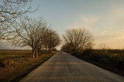 Paesaggio di inverno o di autunno con la strada e gli alberi Il tramonto dei raggi luminosi dell'oro Su un fondo delle montagne e Fotografie Stock Libere da Diritti