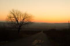 Paesaggio di inverno o di autunno con la strada e gli alberi Il tramonto dei raggi luminosi dell'oro Su un fondo delle montagne e Immagini Stock Libere da Diritti